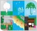 Resiliència urbana per l'adaptació local al canvi climàtic: Solucions basades en la natura i balanç econòmic